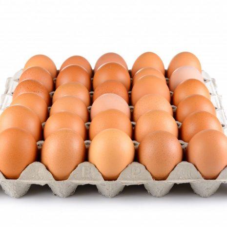 eggs - tray