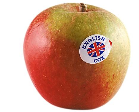APPLE, ENGLISH COX
