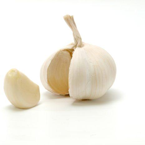 garlic-scaled-1.jpg