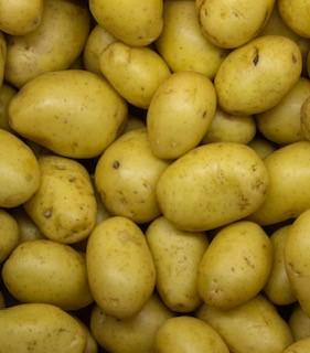 salad-potatoes.jpg